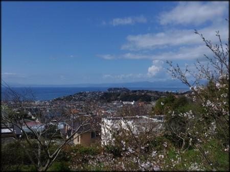 桜もいいけどこの時期は海も綺麗です。(2014.4.5 遠くに臨む江ノ島)