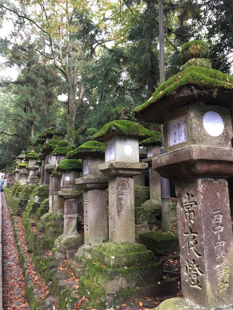 f:id:sumika_morita:20161112201204j:image