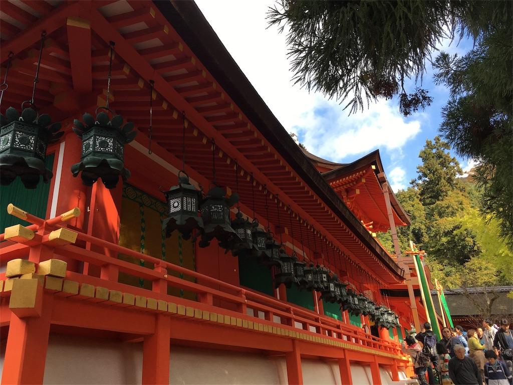 f:id:sumika_morita:20161112201409j:image