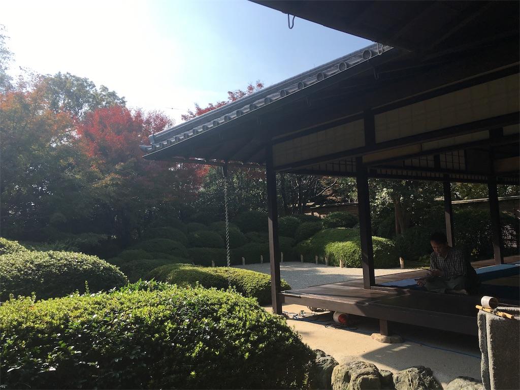 f:id:sumika_morita:20161123123628j:image