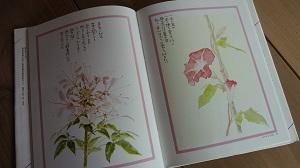 f:id:sumikichi52:20160705190208j:plain