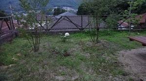 f:id:sumikichi52:20160706200202j:plain