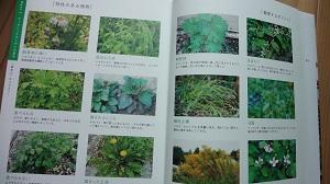 f:id:sumikichi52:20160713135131j:plain