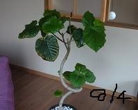 f:id:sumikichi52:20160804193850j:plain