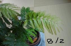f:id:sumikichi52:20160804220951j:plain