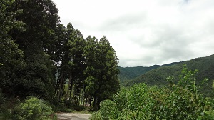f:id:sumikichi52:20160828205720j:plain