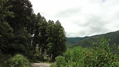 f:id:sumikichi52:20160830184214j:plain