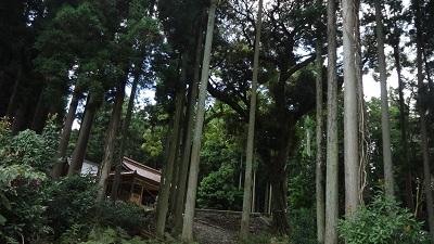 f:id:sumikichi52:20160830185449j:plain