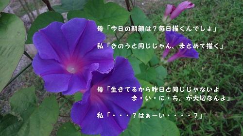 f:id:sumikichi52:20160831103359j:plain