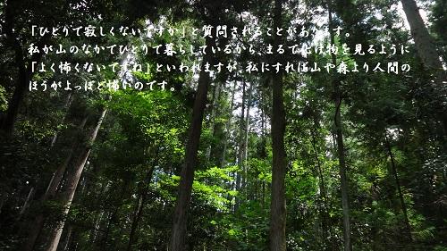f:id:sumikichi52:20160904185243j:plain