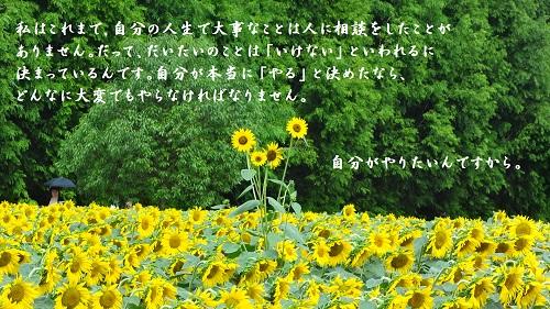 f:id:sumikichi52:20160904185245j:plain