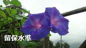 f:id:sumikichi52:20160928184210j:plain