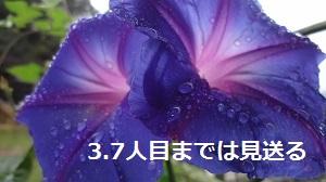 f:id:sumikichi52:20160928184211j:plain
