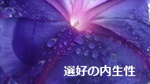 f:id:sumikichi52:20160928184212j:plain