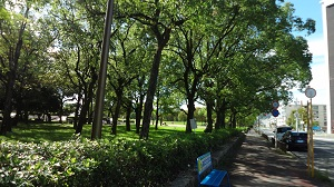 f:id:sumikichi52:20161011075055j:plain