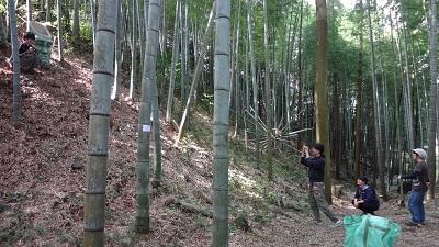 f:id:sumikichi52:20161021121955j:plain