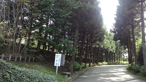 f:id:sumikichi52:20161023090138j:plain