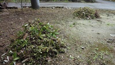 f:id:sumikichi52:20161115100339j:plain