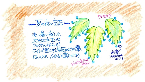 f:id:sumikichi52:20161121175607j:plain
