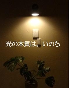 f:id:sumikichi52:20161207143655j:plain