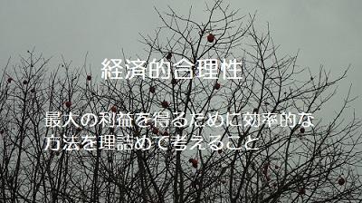 f:id:sumikichi52:20161210081433j:plain
