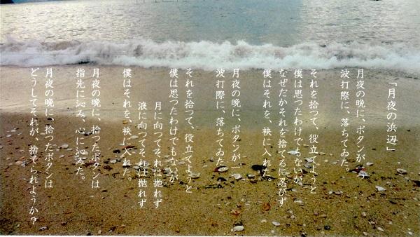 f:id:sumikichi52:20170125205210j:plain