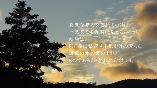 f:id:sumikichi52:20170213123535j:plain