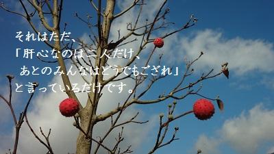 f:id:sumikichi52:20170217183314j:plain