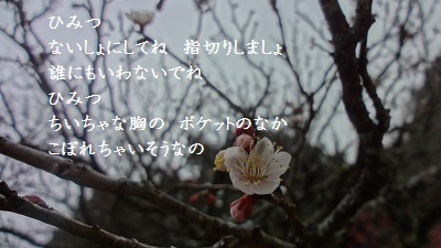 f:id:sumikichi52:20170220224859j:plain