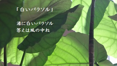 f:id:sumikichi52:20170220224908j:plain