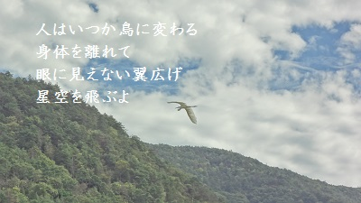 f:id:sumikichi52:20170228230013j:plain