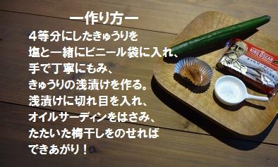 f:id:sumikichi52:20170304070428j:plain