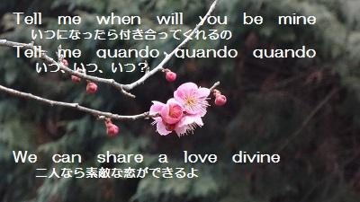 f:id:sumikichi52:20170305133054j:plain