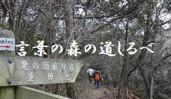 f:id:sumikichi52:20170307103424j:plain