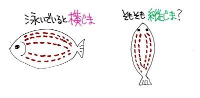 f:id:sumikichi52:20170307103916j:plain