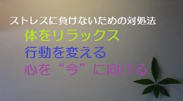 f:id:sumikichi52:20170307215217j:plain