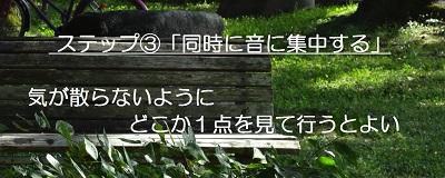 f:id:sumikichi52:20170307215906j:plain