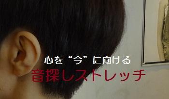 f:id:sumikichi52:20170307215907j:plain