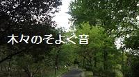 f:id:sumikichi52:20170307215914j:plain