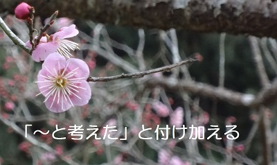 f:id:sumikichi52:20170307220841j:plain