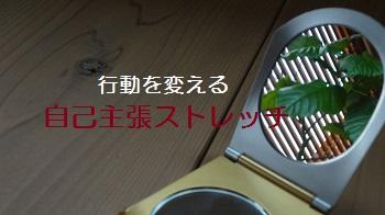 f:id:sumikichi52:20170307221942j:plain