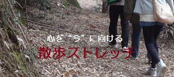 f:id:sumikichi52:20170307222350j:plain