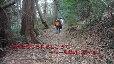 f:id:sumikichi52:20170307222353j:plain