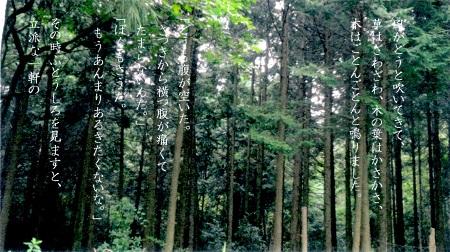 f:id:sumikichi52:20170308131840j:plain