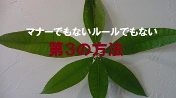 f:id:sumikichi52:20170314230642j:plain