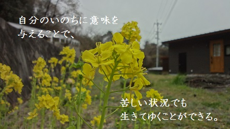 f:id:sumikichi52:20170321122907j:plain