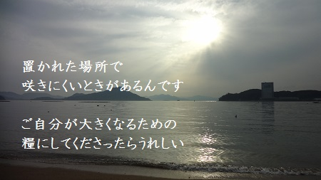 f:id:sumikichi52:20170321122909j:plain