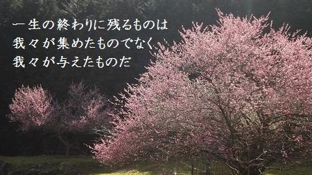 f:id:sumikichi52:20170321122911j:plain