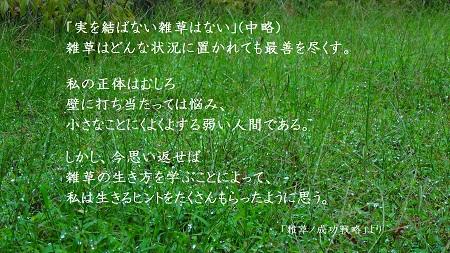 f:id:sumikichi52:20170322105004j:plain