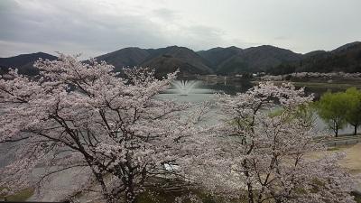 f:id:sumikichi52:20170410193543j:plain